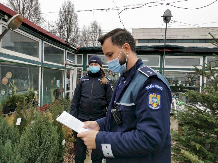 Acțiuni de control ale polițiștilor constănțeni la comercianții de brazi de Crăciun